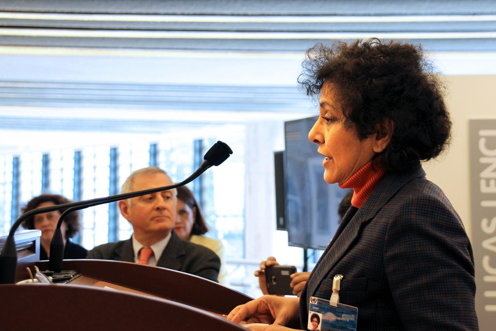 Irene Khan, Director-General of IDLO